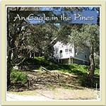an-eagle-in-the-pines
