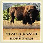 star-b-ranch-julian-chamber