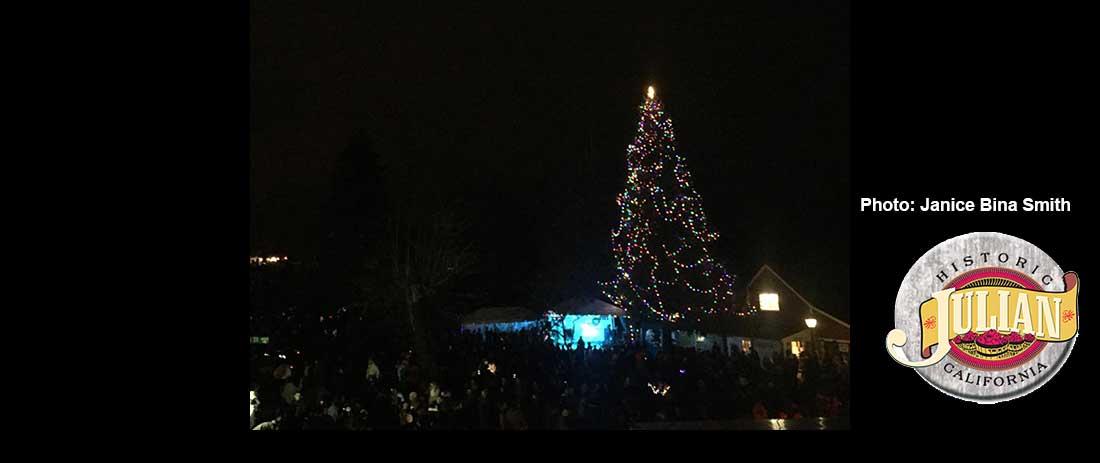 julian christmas tree 18 3