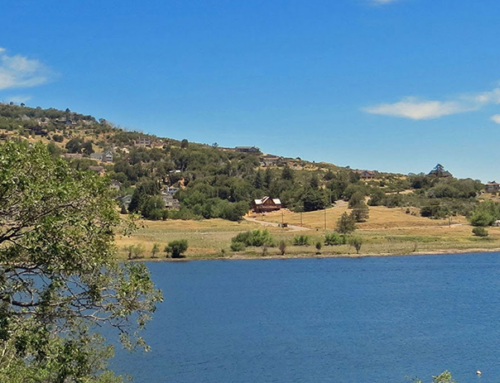 Take a Trip To Lake Cuyamaca and Teach Children about Nature Conservation