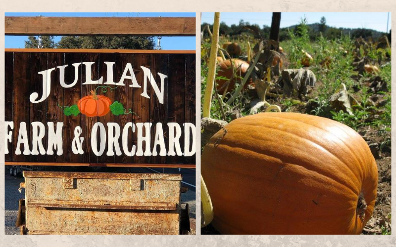 Julian Farm & Orchard photo
